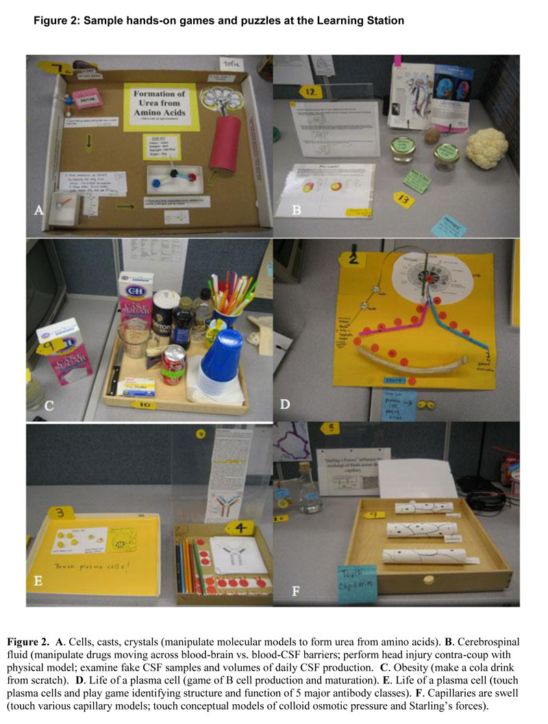 The Basic Science Learning Station: An Innovative Kinesthetic ...